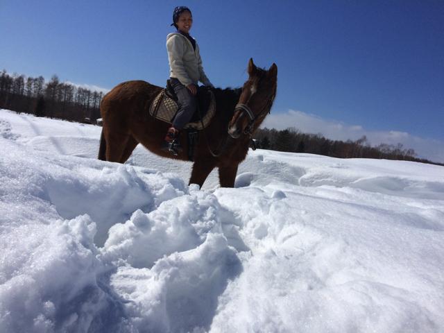 horsey04-03-2016-3